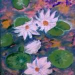 Nenúfares | Water lilies