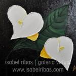 Jarros | Arum Lilies